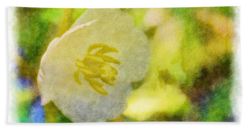 Tiny Hand Towel featuring the photograph Southern Missouri Wildflowers - Mayapples Bloom - Digital Paint 2 by Debbie Portwood