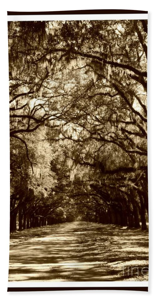 Brown Bath Sheet featuring the photograph Southern Welcome In Sepia by Carol Groenen