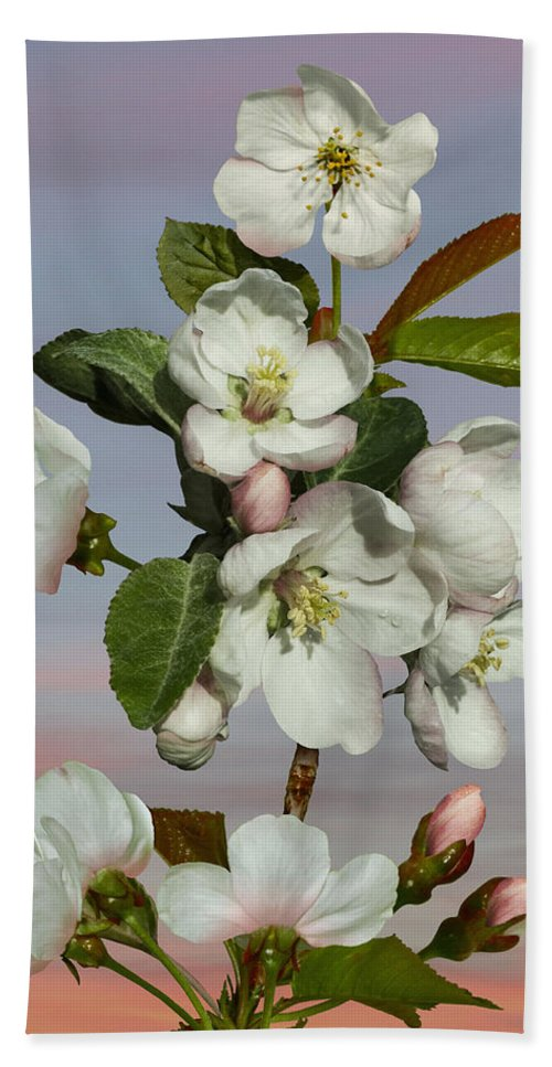 Tree Hand Towel featuring the digital art Spade's Apple Blossoms by IM Spadecaller