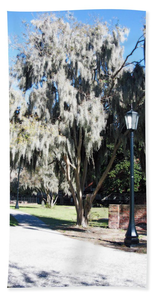 Spanish Moss Hand Towel featuring the photograph Spanish Moss by Brittany Horton