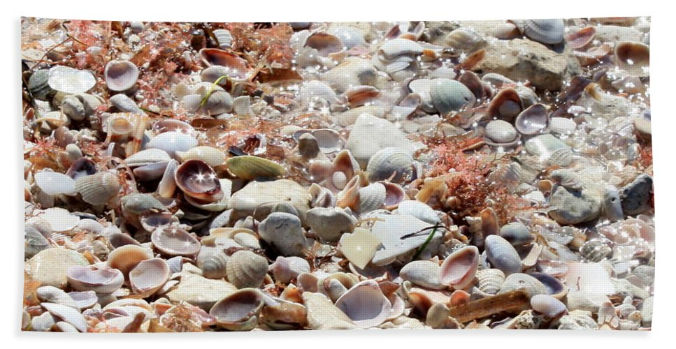 Florida Hand Towel featuring the photograph Sparkling Shells by Carol Groenen