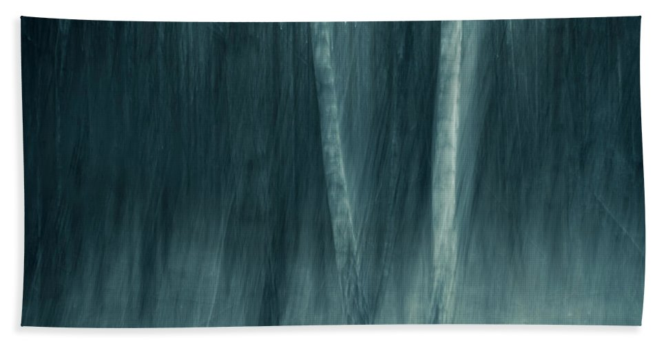 Trees Bath Sheet featuring the photograph Spell by Dorit Fuhg