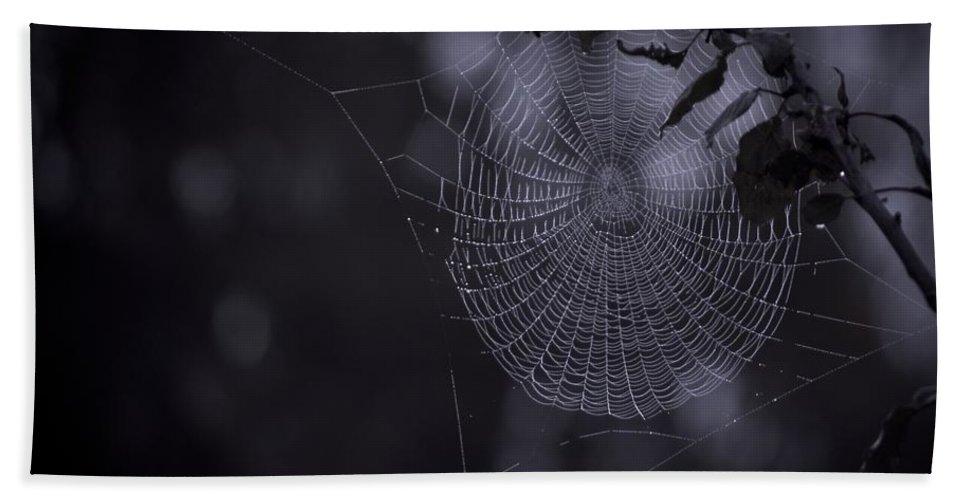 Spider Bath Sheet featuring the photograph Spider Art by Danielle Silveira