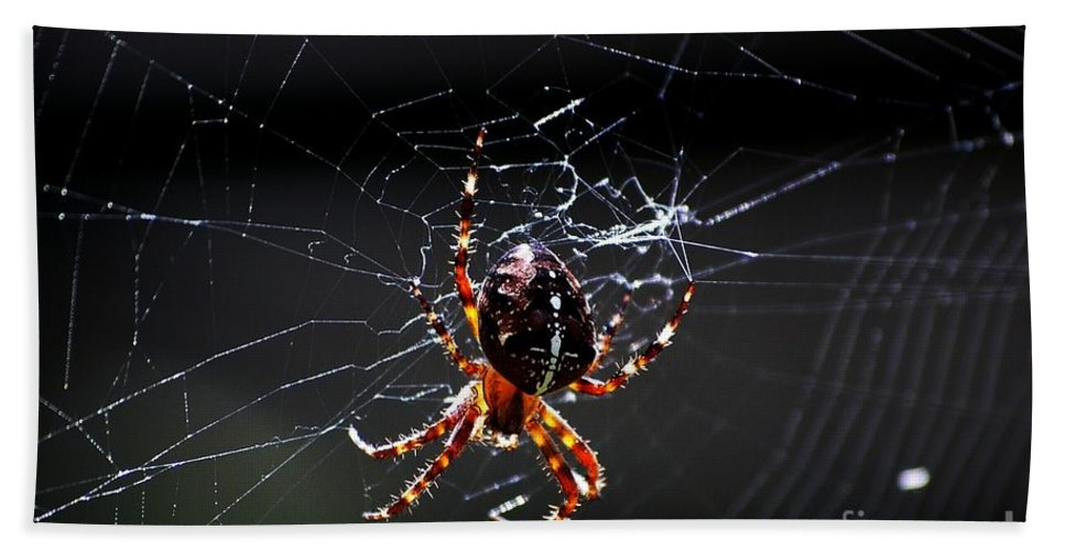 Digital Photo Hand Towel featuring the photograph Spider by David Lane