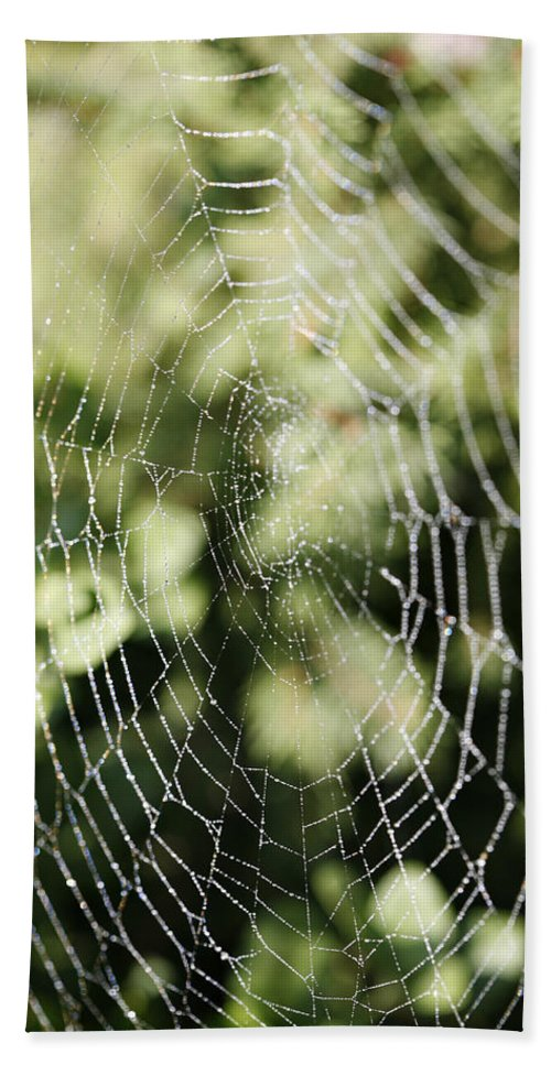 Spider Bath Towel featuring the photograph Spinning Out Of Control by Marilyn Hunt