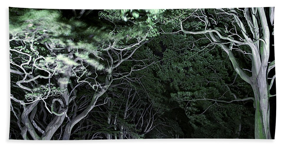 Botanic Hand Towel featuring the photograph Spooky Trees by Svetlana Sewell