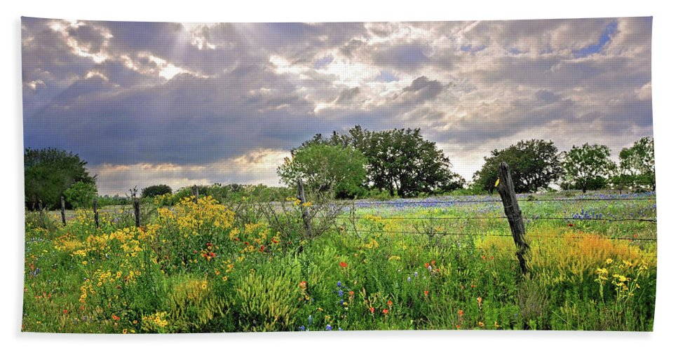 Wildflowers Bath Sheet featuring the photograph Spotlight On Spring by Lynn Bauer