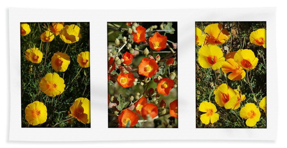 Arizona Hand Towel featuring the photograph Spring - Desert Style 2 by Jill Reger