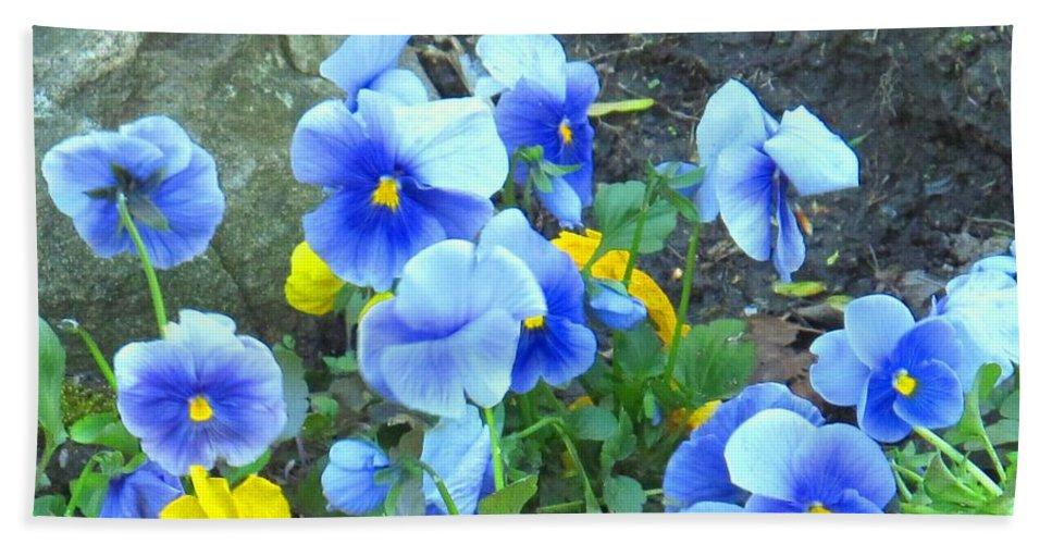 Blue Bath Sheet featuring the photograph Spring Beauties by Ian MacDonald