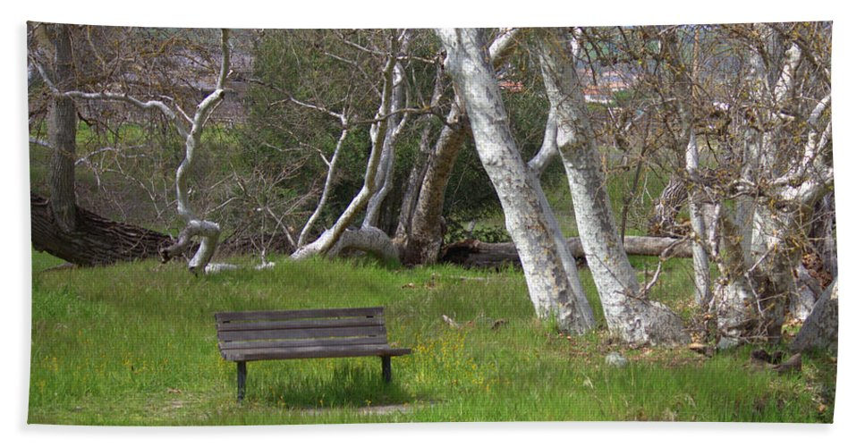 Bench Bath Sheet featuring the photograph Spring Bench In Sycamore Grove Park by Carol Groenen