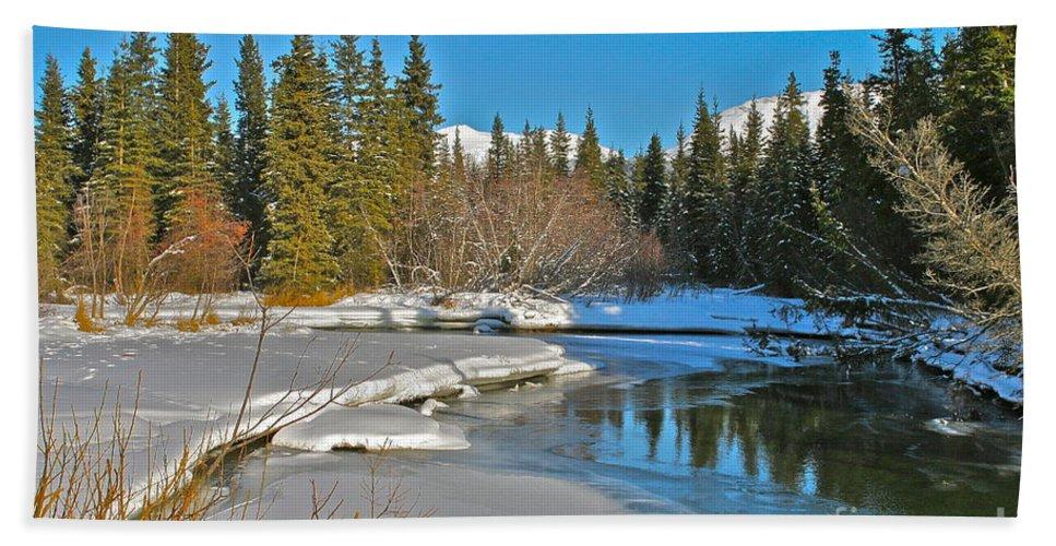 Alaska Bath Towel featuring the photograph Spring Break by Rick Monyahan