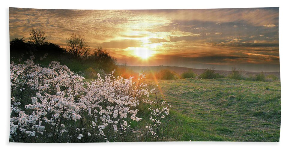 Nature Hand Towel featuring the photograph Spring Flowers. by Alex Lim