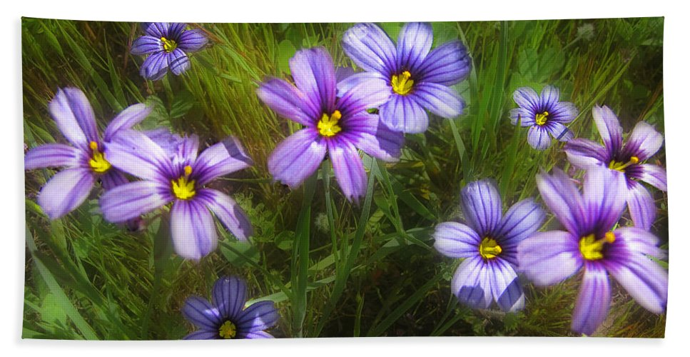 Flowers Hand Towel featuring the photograph Spring Flowers by Karen W Meyer