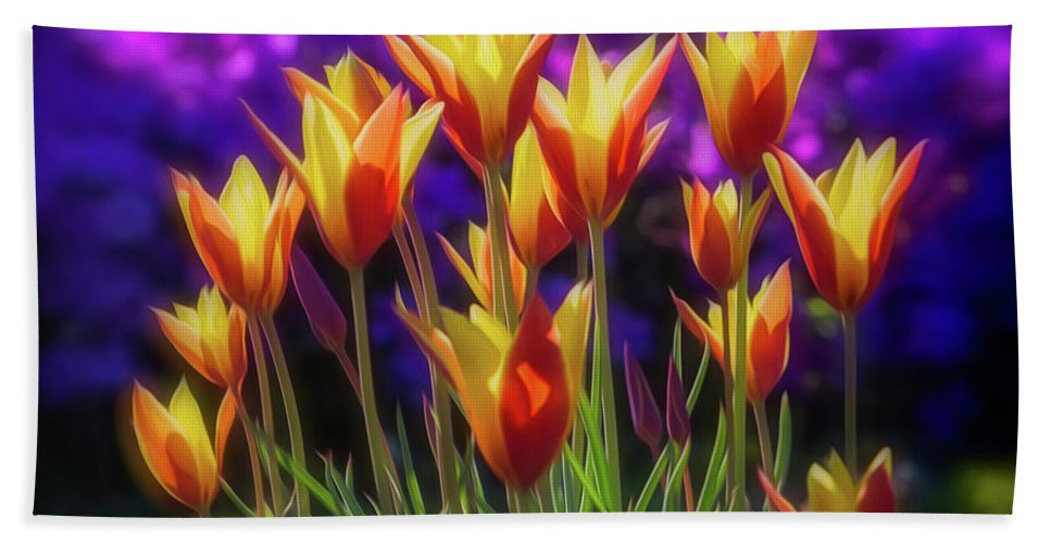 Oakland Cemetery Hand Towel featuring the photograph Spring Is Here by Doug Sturgess