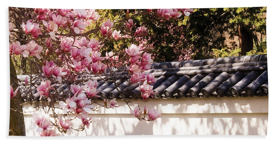 Magnolia Bath Sheet featuring the photograph Spring - Magnolia by Mike Savad