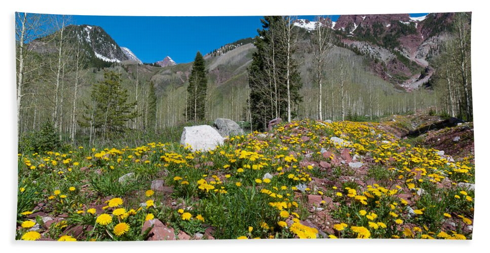Rocky Mountains Hand Towel featuring the photograph Spring Rocky Mountain Landscape by Cascade Colors