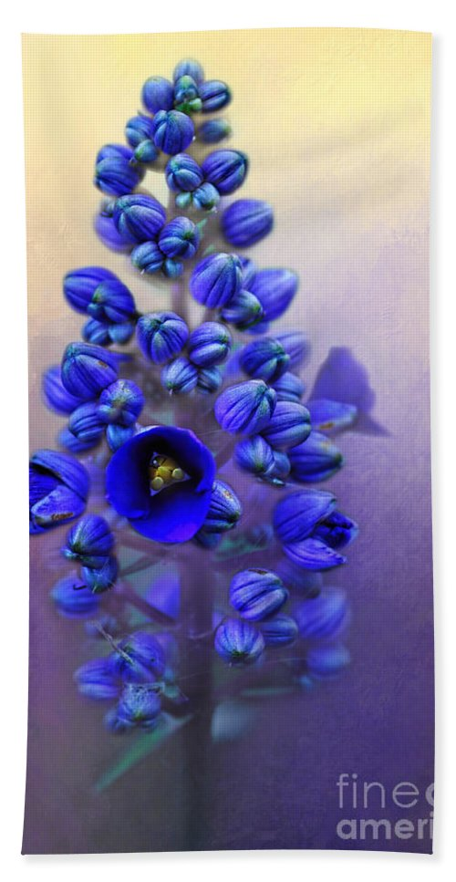 Photography Hand Towel featuring the photograph Spring Sunshine On Blue by Kaye Menner