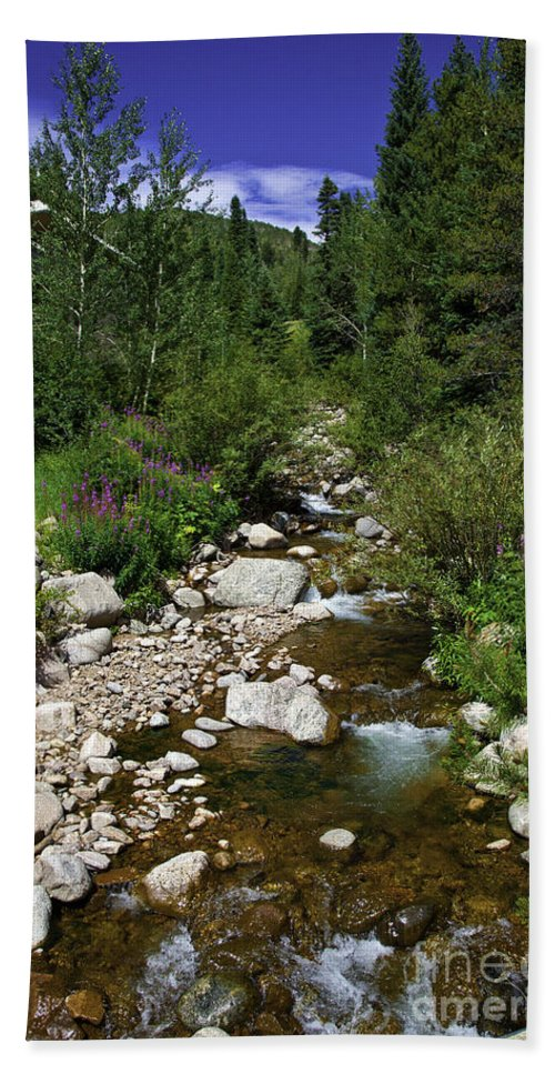 Stream Hand Towel featuring the photograph Spring Time II by Madeline Ellis