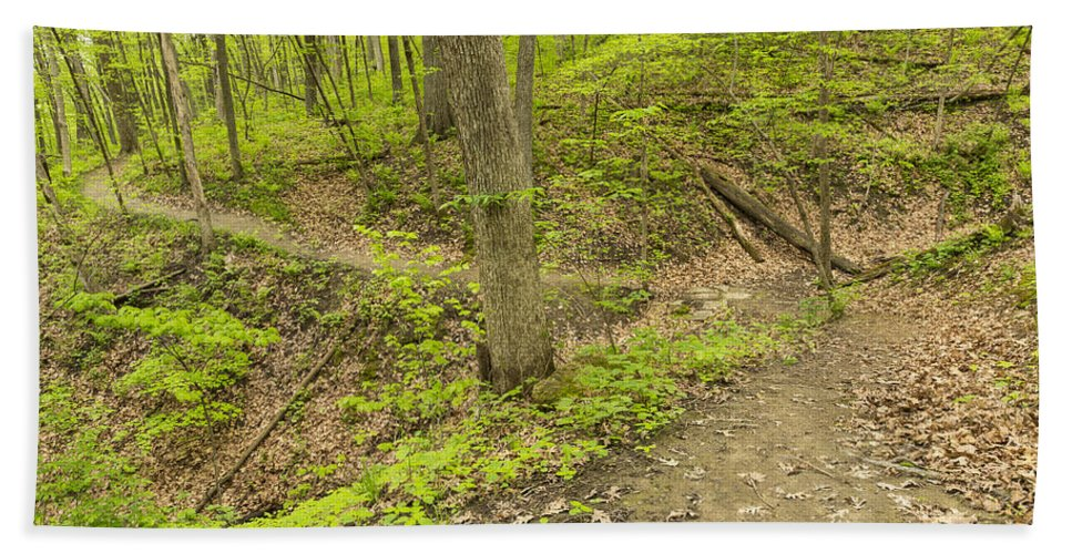Trail Hand Towel featuring the photograph Spring Trail Scene 10 by John Brueske