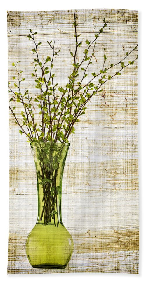Spring Hand Towel featuring the photograph Spring Vase by Elena Elisseeva