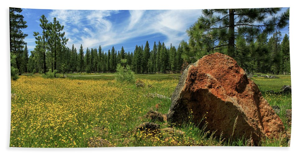 Landscape Bath Sheet featuring the photograph Springtime In Lassen County by James Eddy