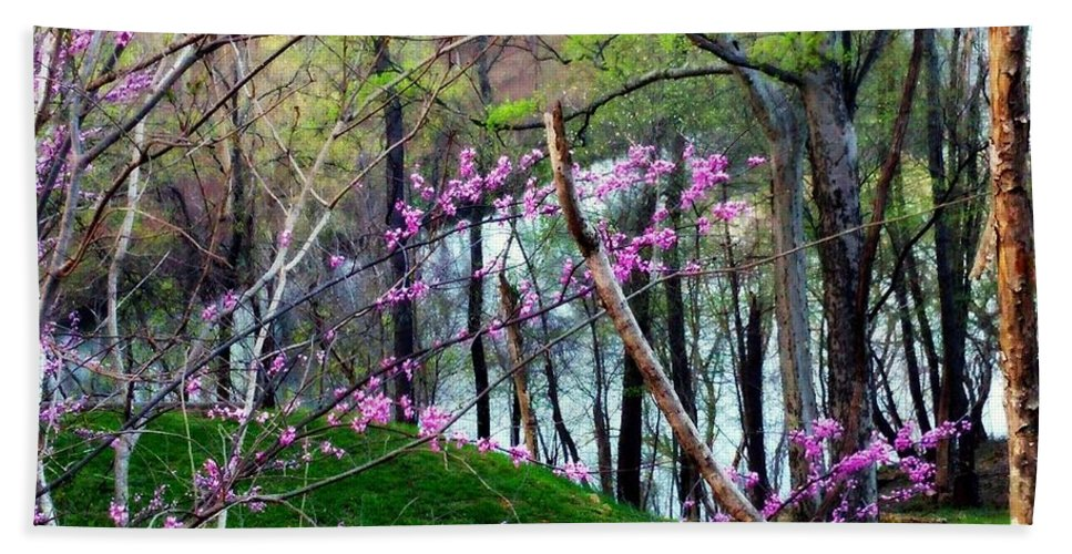 Spring Hand Towel featuring the photograph Springtime In The Mountains 2 by Kathy Barney