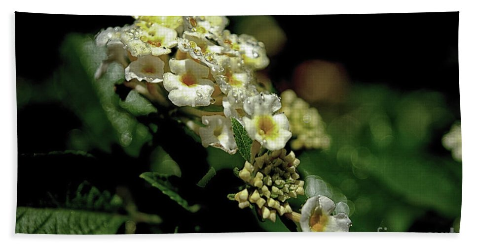 Michelle Meenawong Hand Towel featuring the photograph Sprinkles On Lantana Flower by Michelle Meenawong