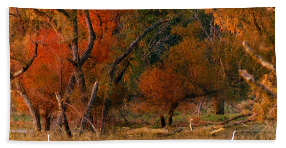 Landscape Bath Towel featuring the photograph Squaw Creek Egrets by Steve Karol