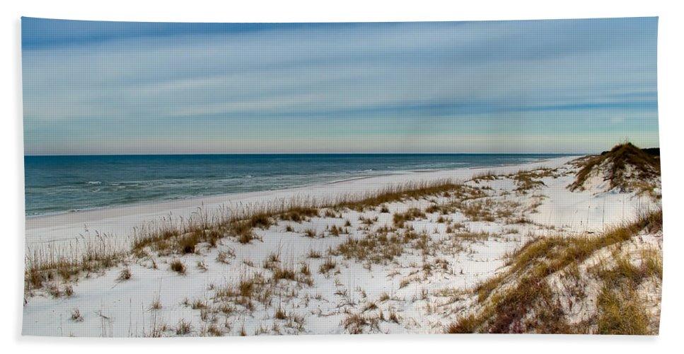Sand Bath Towel featuring the photograph St. Joseph Peninsula Dunes by Rich Leighton