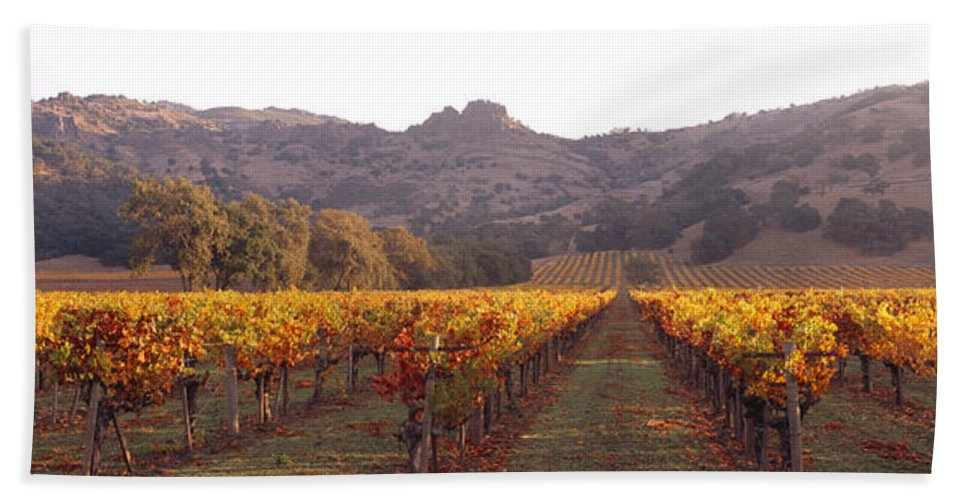 Photography Bath Sheet featuring the photograph Stags Leap Wine Cellars Napa by Panoramic Images