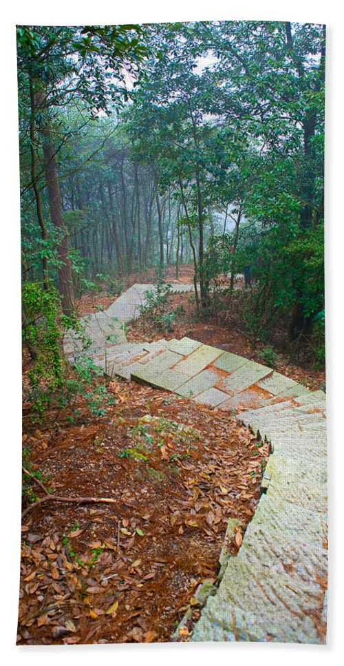 Trees Hand Towel featuring the photograph Stairs Down Mountain by James O Thompson