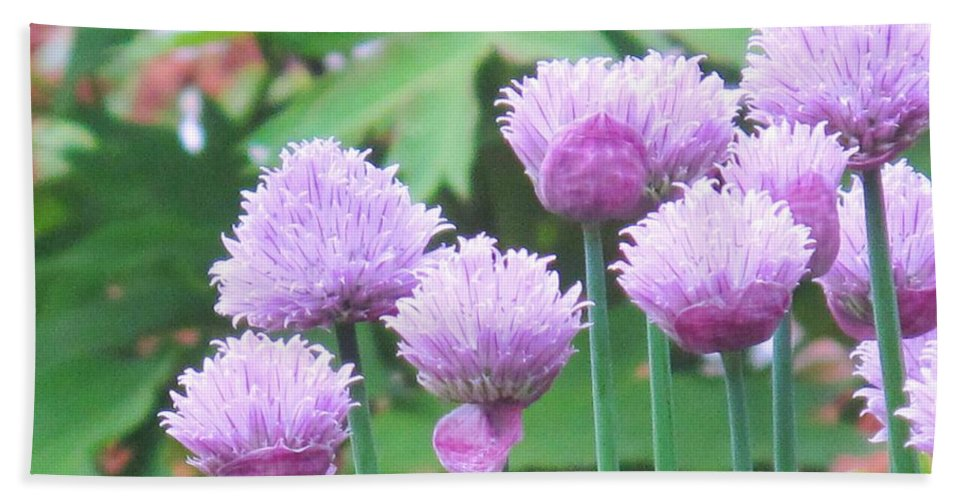 Flower Bath Towel featuring the photograph Stand Tall by Ian MacDonald