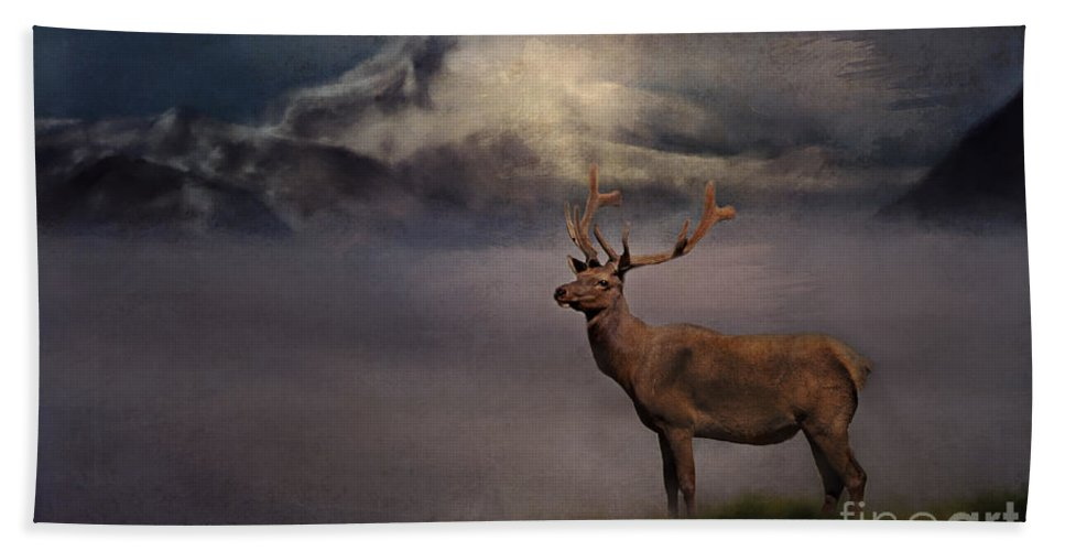 Elk Hand Towel featuring the photograph Standing Proud by Pam Holdsworth