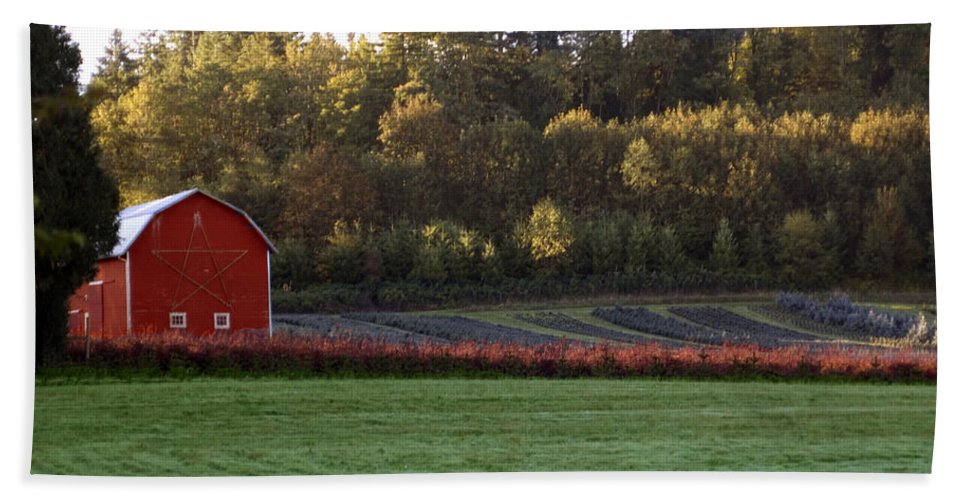 Star Hand Towel featuring the photograph Star Barn by Sara Stevenson