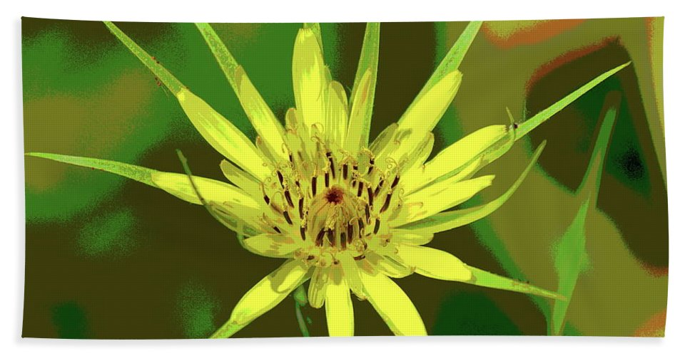 Nature Hand Towel featuring the photograph Star Flower by Ben Upham III