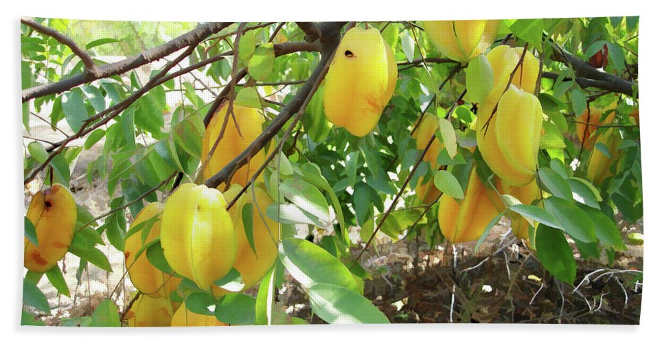 Star Apple Fruit On The Tree Bath Sheet featuring the painting Star Fruit Belongs To The Plant Family by Jeelan Clark