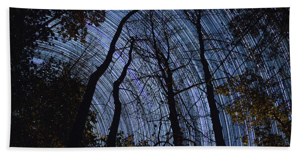 Trees Bath Sheet featuring the photograph Stars And Silhouettes by Cris Ritchie