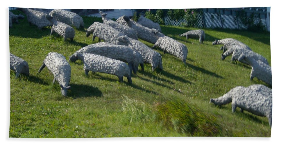 Sheep Hand Towel featuring the photograph Ste Flavie 002 by Line Gagne