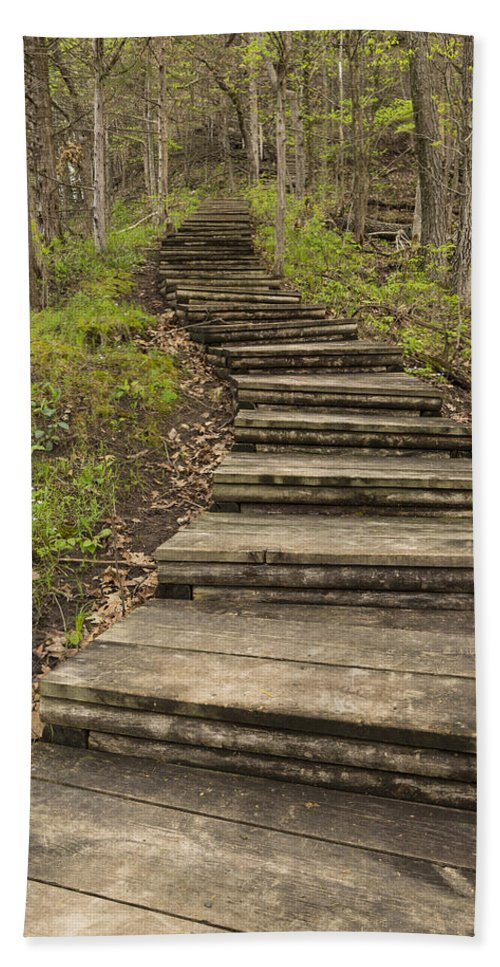 Steps Hand Towel featuring the photograph Step Trail In Woods 17 A by John Brueske