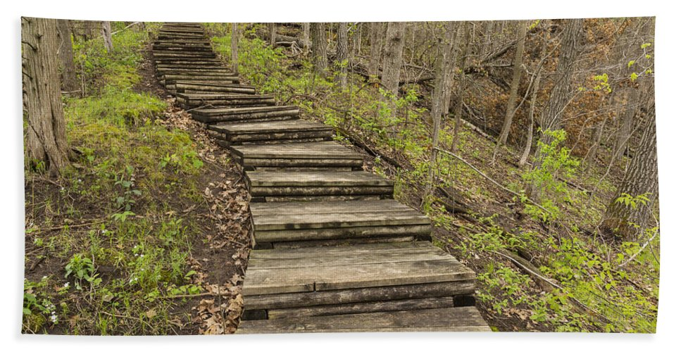 Steps Hand Towel featuring the photograph Step Trail In Woods 17 B by John Brueske