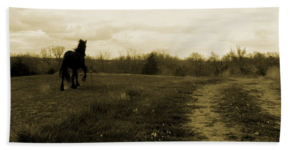 Percheron Draft Horse Hand Towel featuring the photograph Stepping Out by Julie Pappas