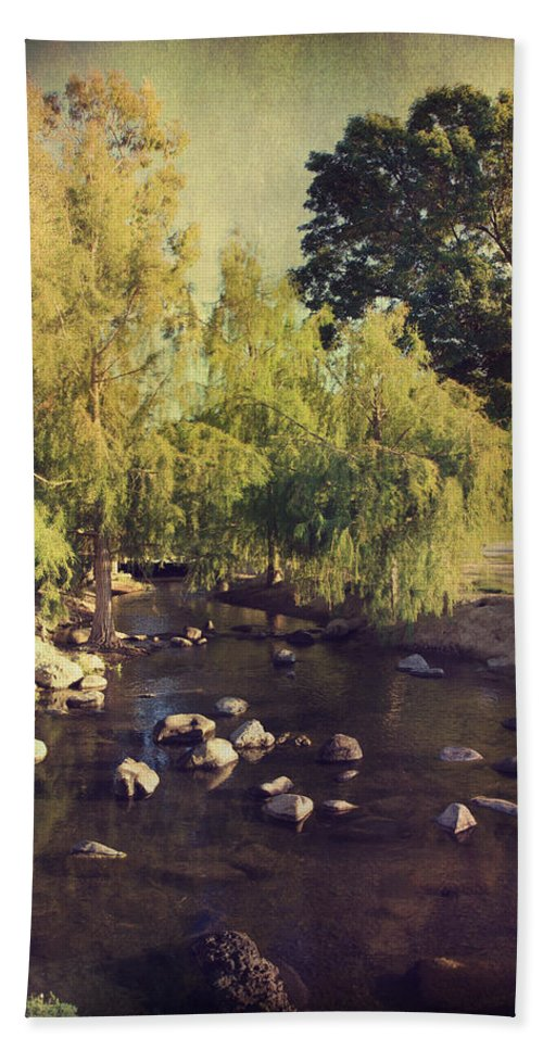 Landscapes Bath Sheet featuring the photograph Stepping Stones To My Heart by Laurie Search
