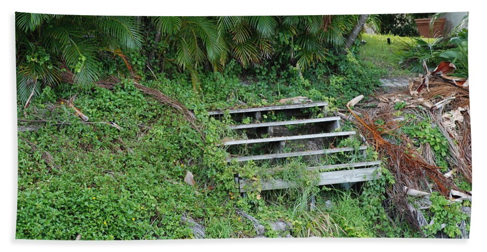 Grass Bath Towel featuring the photograph Steps In The Grass by Rob Hans