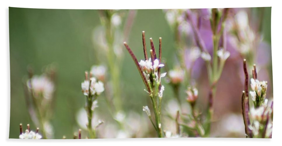 Stick Flowers Bath Sheet featuring the photograph Stick Flower by Keith Bowen
