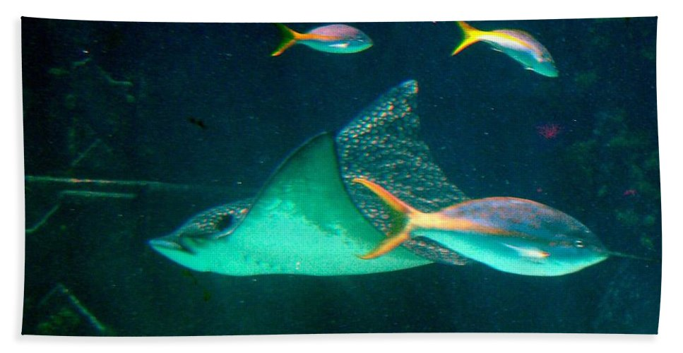 Aquarium Bath Sheet featuring the photograph Sting Ray by Gary Wonning