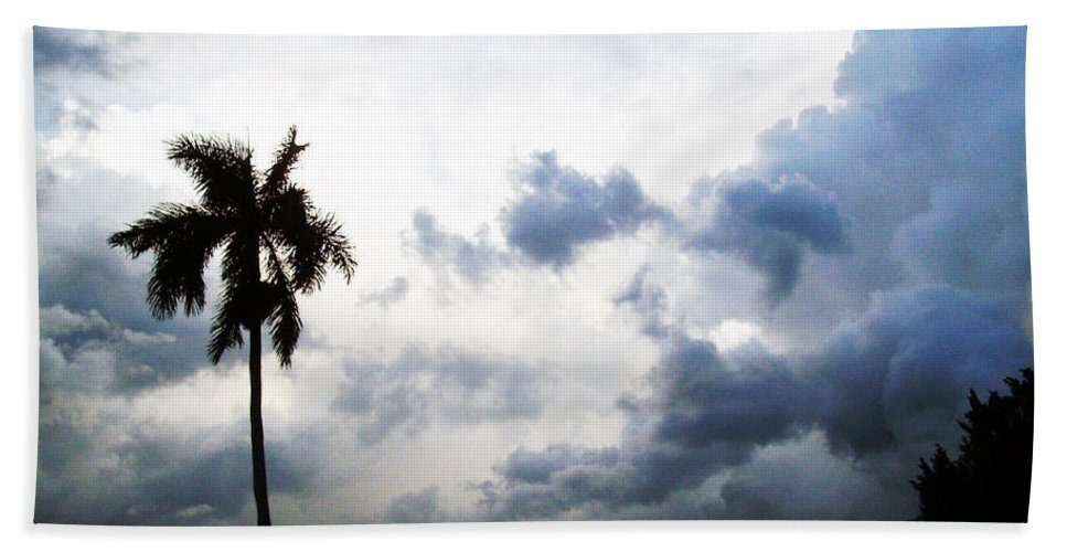 Florida Bath Sheet featuring the photograph Storm Brewing by Chris Andruskiewicz