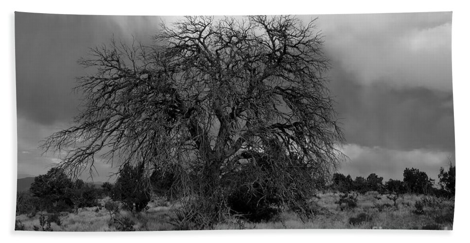 Storm Bath Towel featuring the photograph Storm Tree by David Lee Thompson