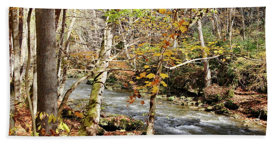 Autumn Bath Sheet featuring the photograph Stream In An Autumn Woods by Daniel Caracappa