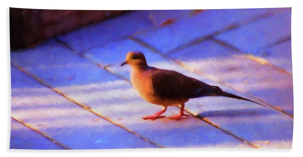Birds Bath Towel featuring the photograph Street Dove by Jan Amiss Photography