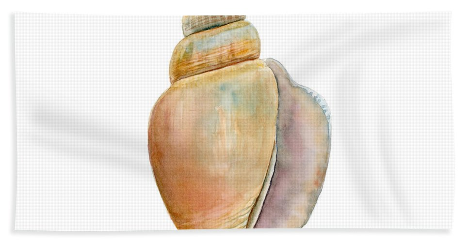Shell Bath Sheet featuring the painting Strombus Vittatus Shell by Amy Kirkpatrick